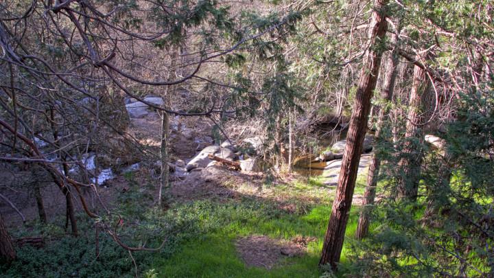 Sierra Springs