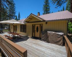 Apple Tree Bear House