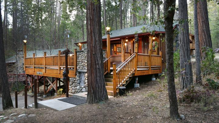 Bear Foot Pines