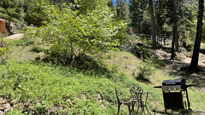 Chalet Yosemite